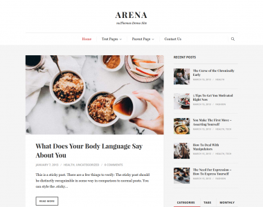 arena wordpress theme